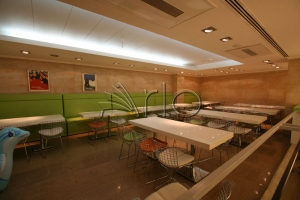 طراحی-دکوراسیون-فست فود-سازه سقف-دارتلا5